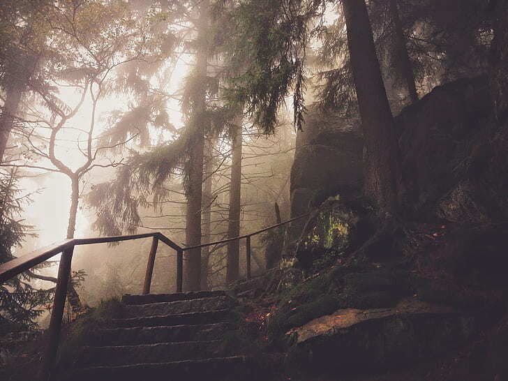 Misty stairs