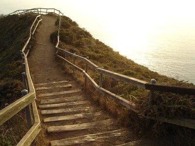 Misty walkway